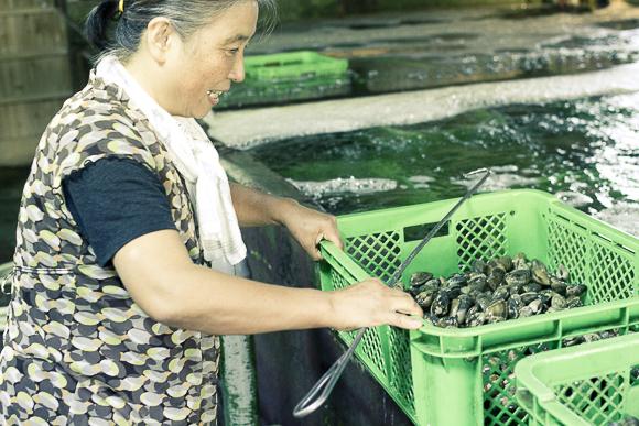 吉田さんのご親戚。カネリ水産さん。渥美産の貝を沢山取り扱っています